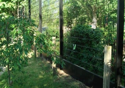 wire-mesh-fencing-st-patricks-school-walthamstow-e-17-london-30