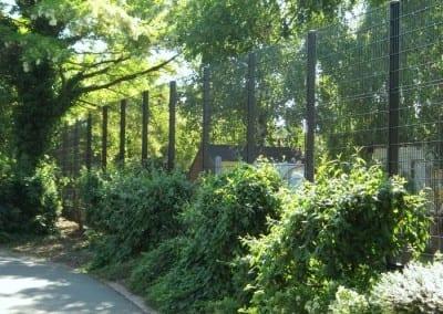 wire-mesh-fencing-st-patricks-school-walthamstow-e-17-london-57